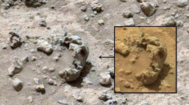 Alien Skull On Mars