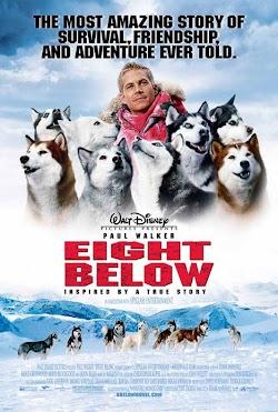 Những Chú Chó Can Đảm - Eight Below (2006) Poster