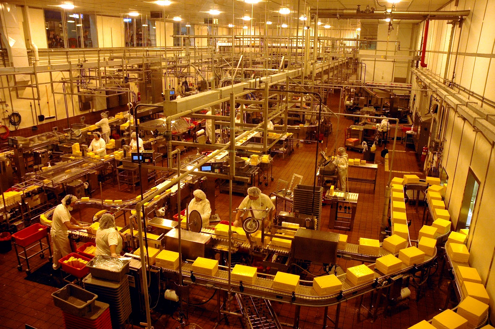 Best Cheese Factory Tours In Wisconsin