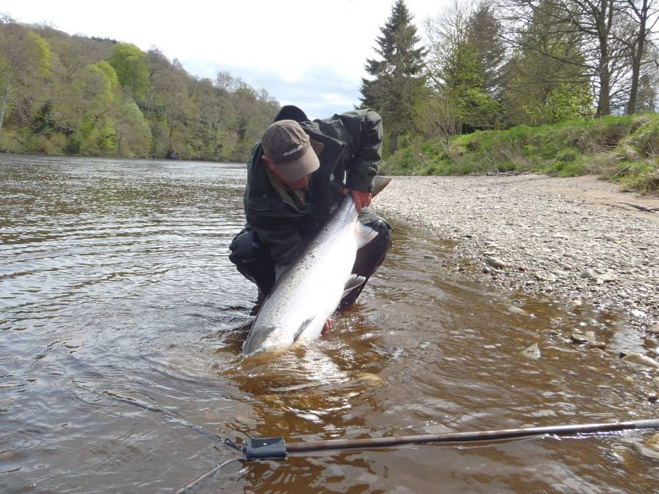 Salmon fishing scotland salmon fishing scotland large for Salmon fishing colorado