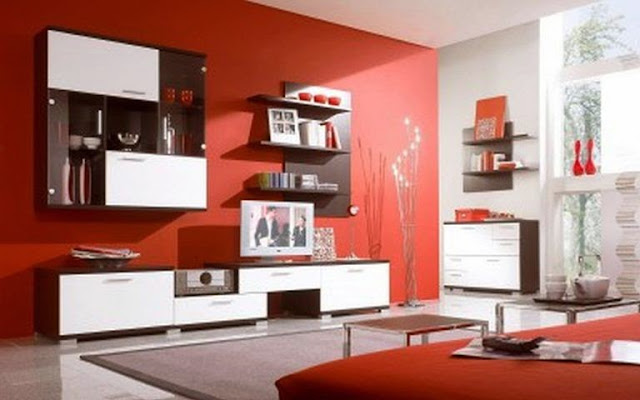 interior wall paint color combinations pictures