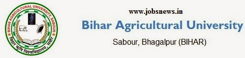 40 Posts of Driver (Matric Pass) in Bihar Krishi Vishwavidyalaya : www.bausabour.ac.in