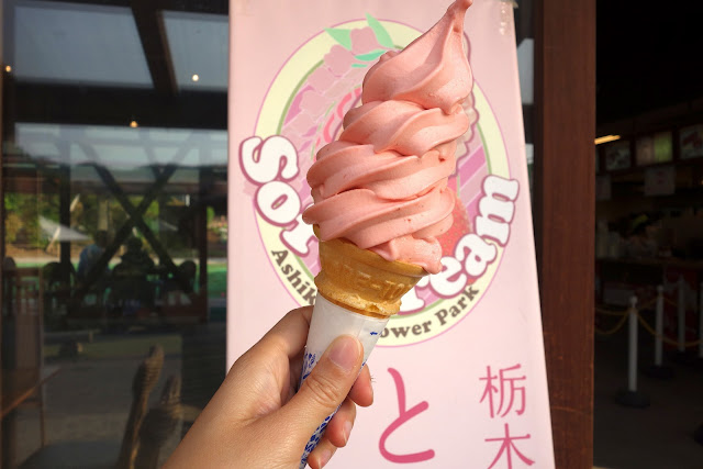Tochigi strawberry soft cream