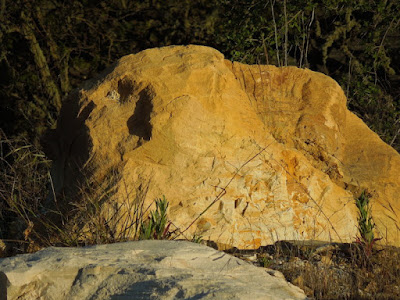 Photos of Old San Luis Obispo County Rocks to Celebrate Old Rock Day