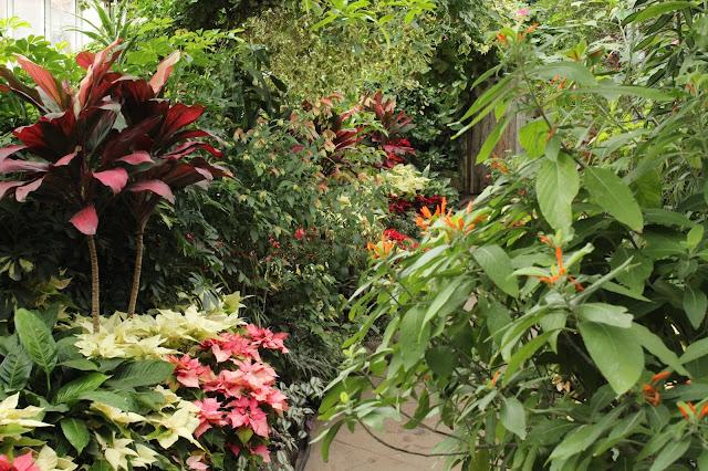 garden pathway at Allan gardens