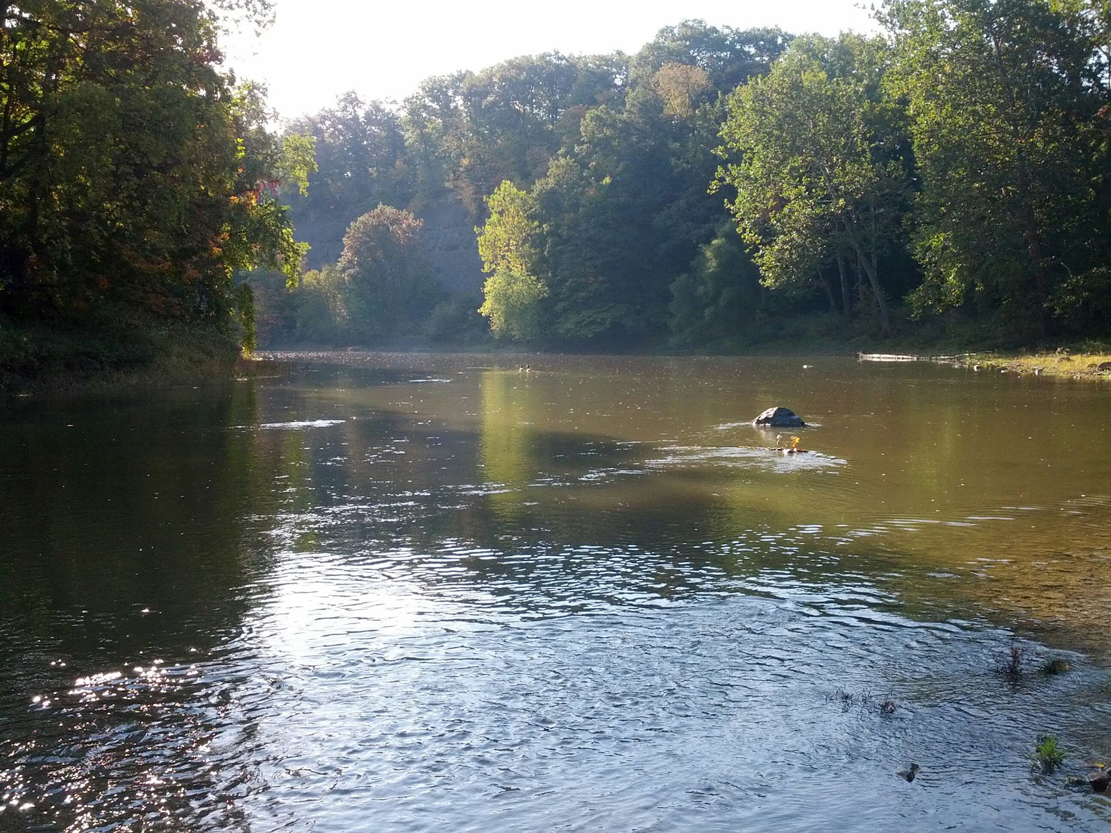 Lake metroparks fishing report a few steelhead reported for Grand river fishing