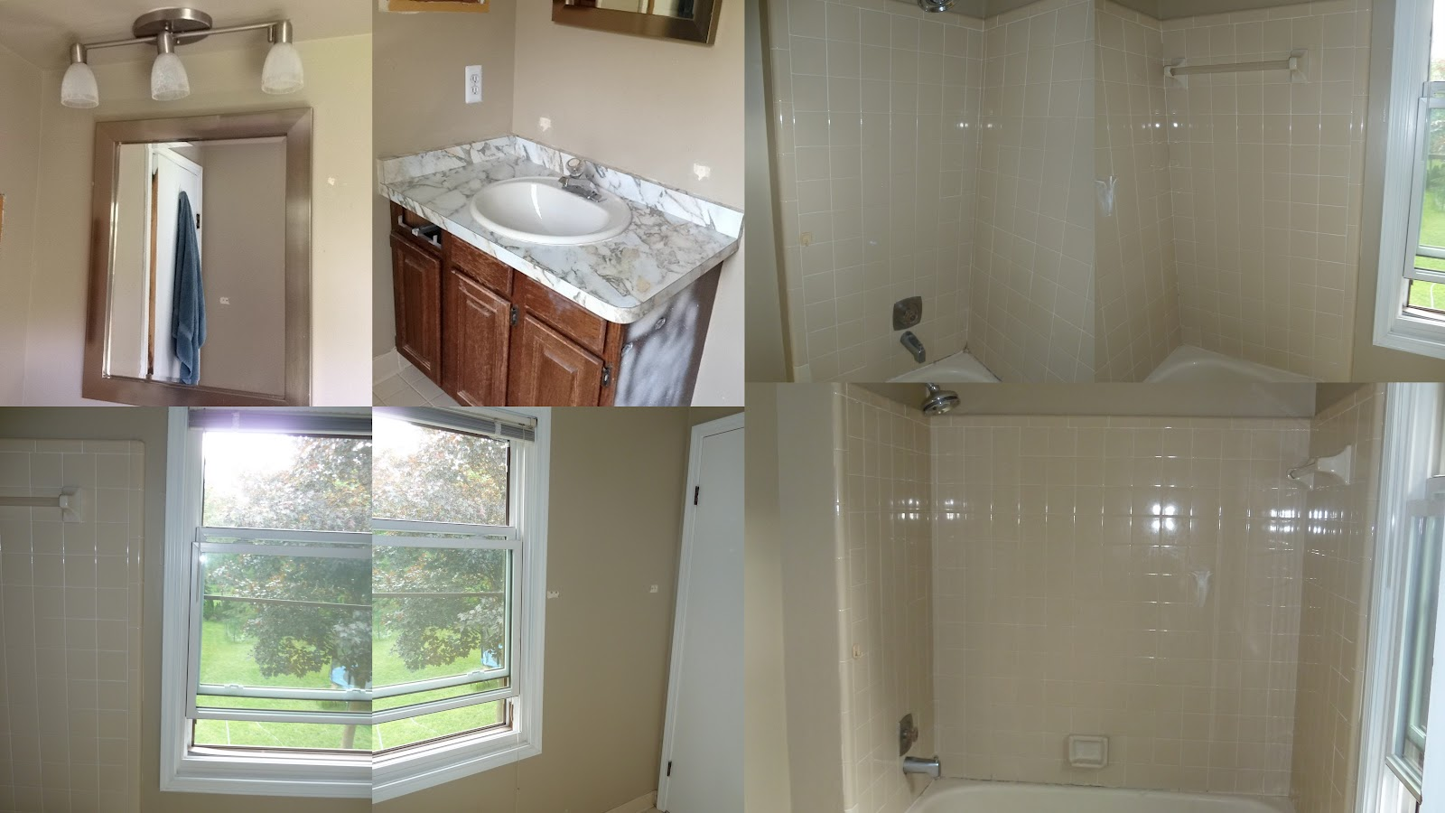 Bath Remodel Master Small