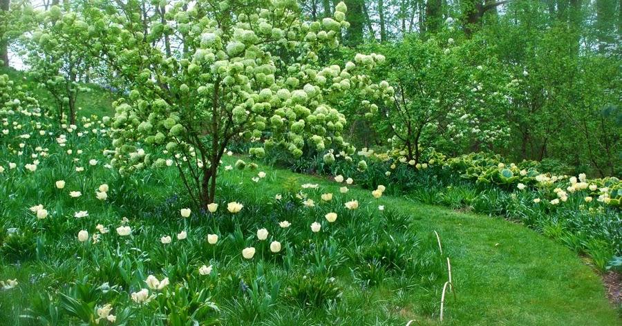 Wife Mother Gardener Chanticleers Bulb Lawn