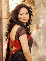 Singer Sunitha Photos from Anamika Promo Song-cover-photo