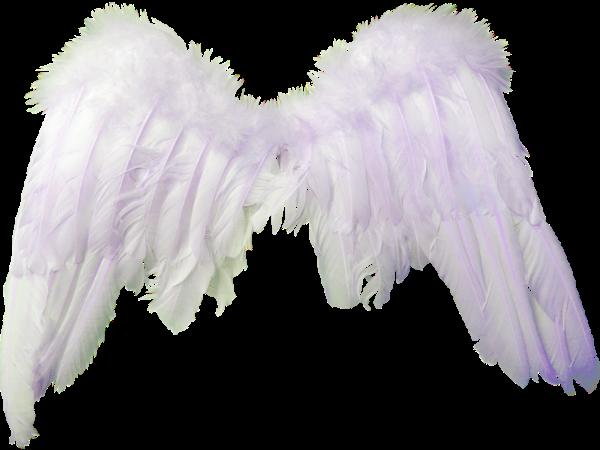 Alas de angel para photoshop - Imagui