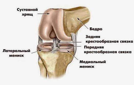 боль под коленом сзади варикоз
