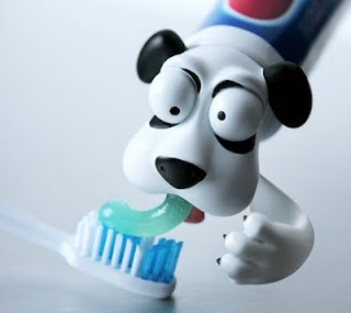 toothpaste holder