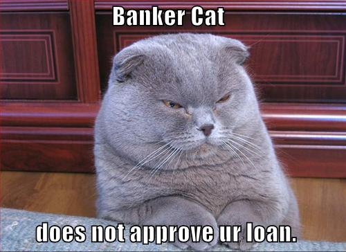 Banker Cat - Does Not Approve Ur Loan
