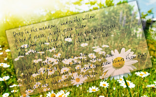Beautiful-love-poem-with-daisy-flower-background-card-image.jpg