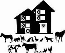 World Farm Animal Day
