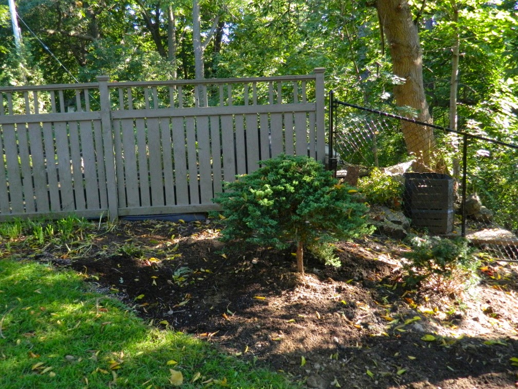 Baby Point garden cleanup after Paul Jung Gardening Services Toronto