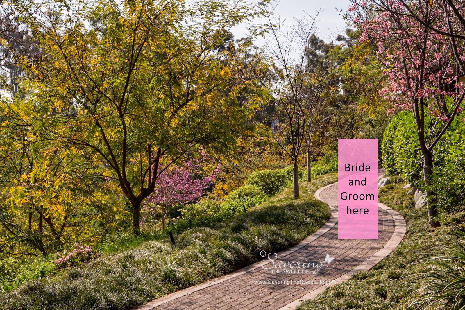 Savoring the sweet life balboa park 39 s japanese friendship for Japanese friendship garden