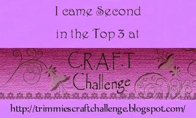 challenge 310