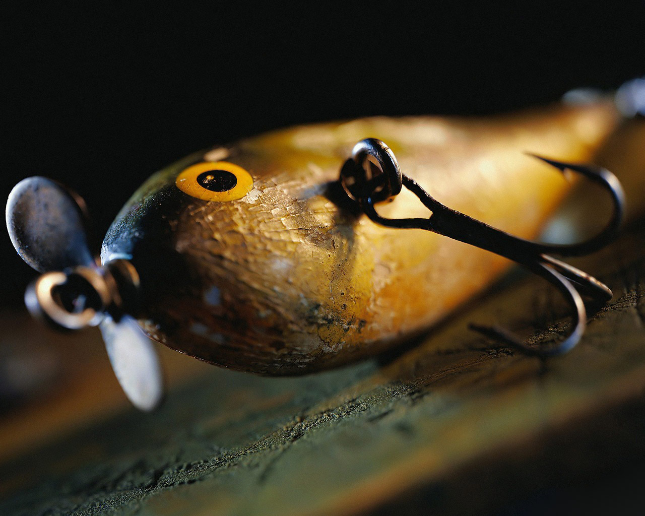fishing lure wallpaper - photo #1