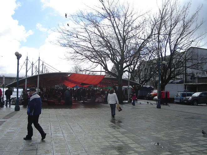 Vista Feria Fluvial