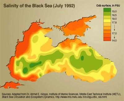 Salinitas Air Laut Indonesia Salinitas Air Laut