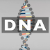 Video Animation : All You Need to Know About DNA
