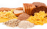 Pengertian Metabolisme dan Proses Metabolisme