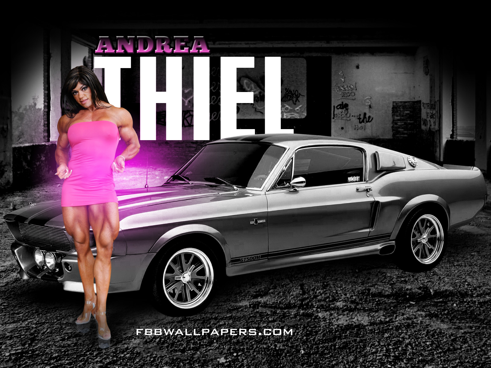 http://1.bp.blogspot.com/-mSvVn3x4xl0/Td0uCGiPeqI/AAAAAAAAEqU/TuMAX2qhFjk/s1600/andie_thiel_1600by1200.jpg