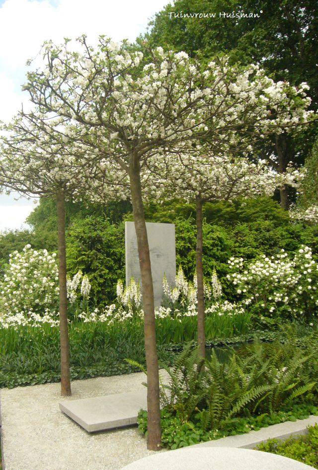 voorbeeld tuin rijtjeshuis