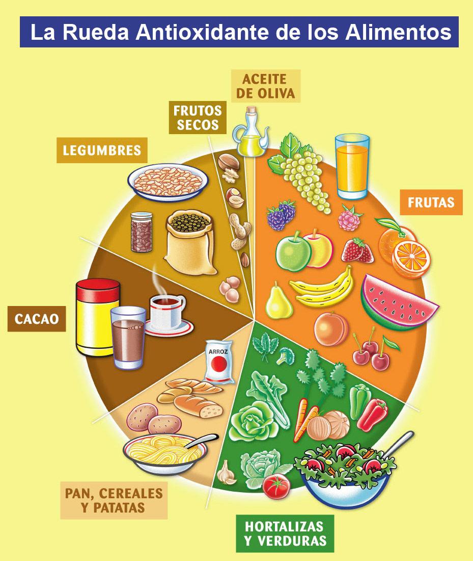 """Se ha desarrollado una """"Nueva rueda de los alimentos"""" cuyas"""