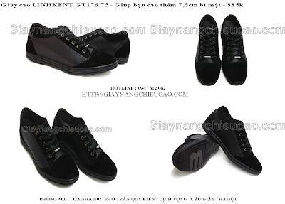Giày nam GT176. 75