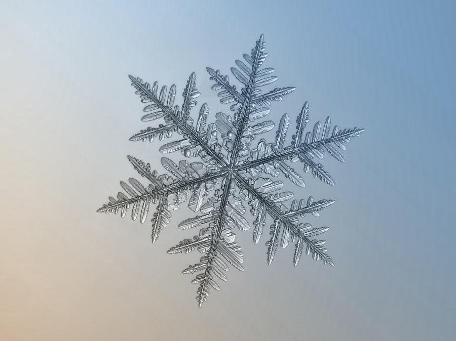 flocon-neige-14-900x674.jpg