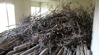 Brush wood in storage for the winter