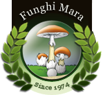 Funghi Mara