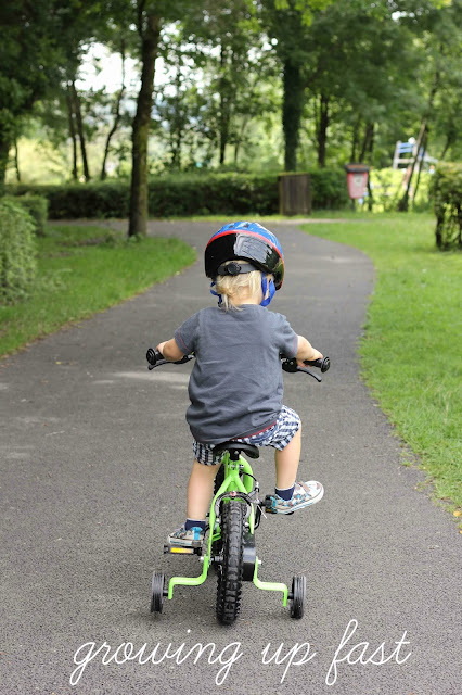 toddler riding bike