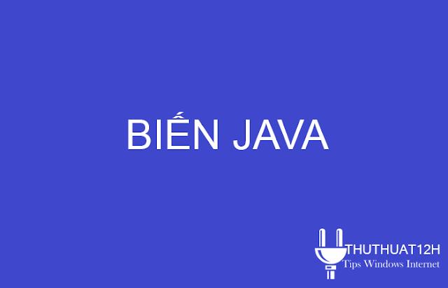 Biến và các loại biến trong Java
