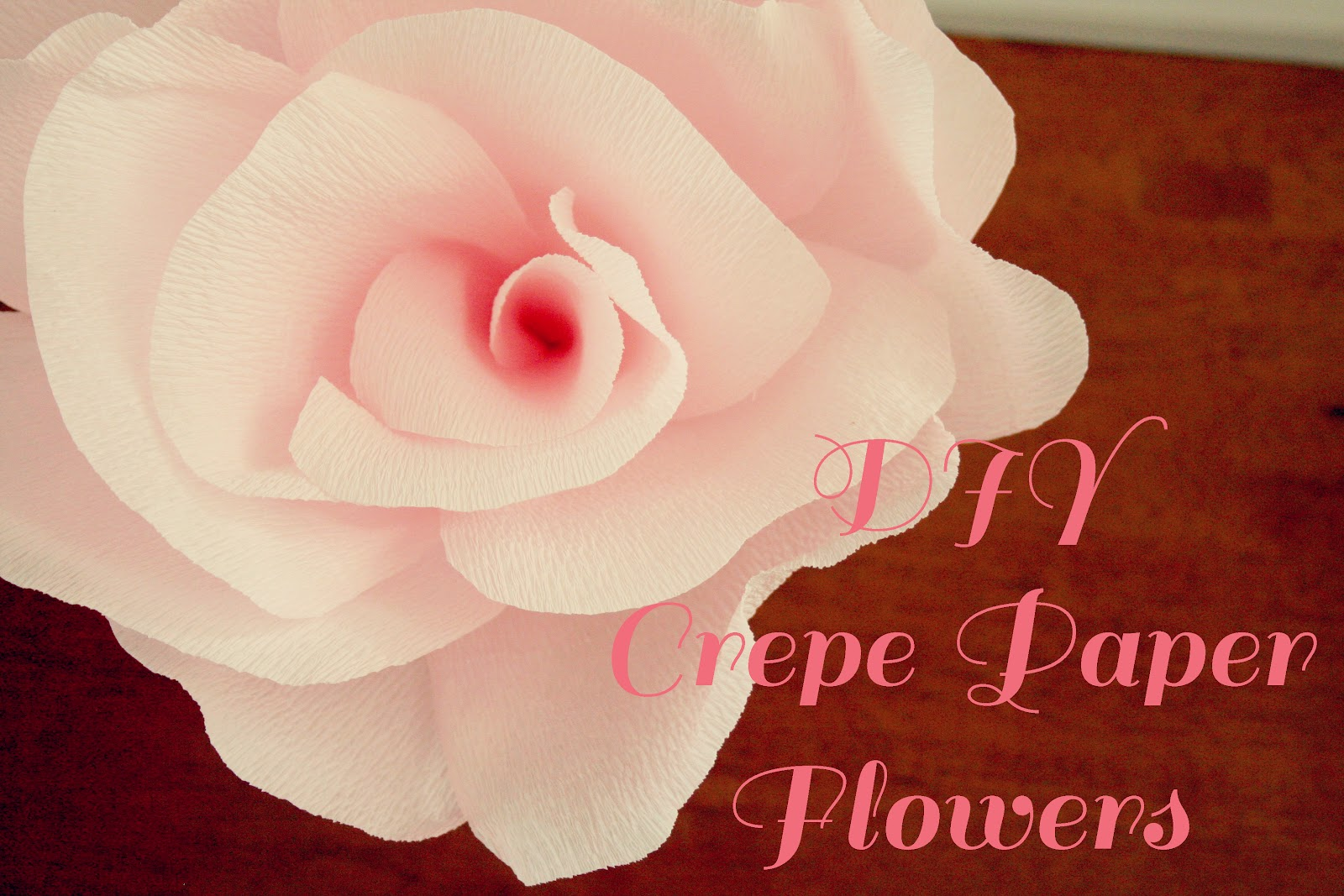 Buggie And Jellybean Diy Crepe Paper Flowers