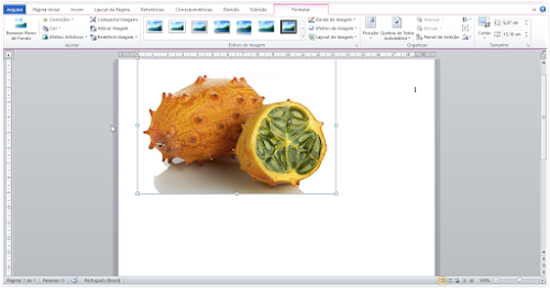 Como inserir legendas em imagens no Word