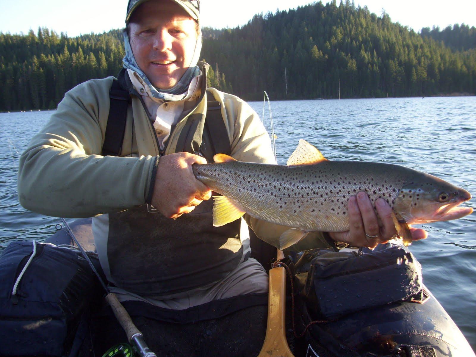 Northern sierra fly fishing butt lake hex hatch for Sierra fly fishing