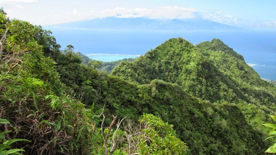 Vue de Tahiti sur le sentier de randonnée à Moorea