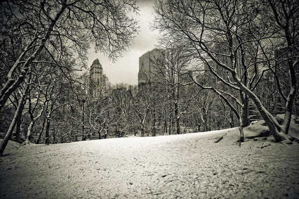 Rinze van Brug - New York Snow Photography