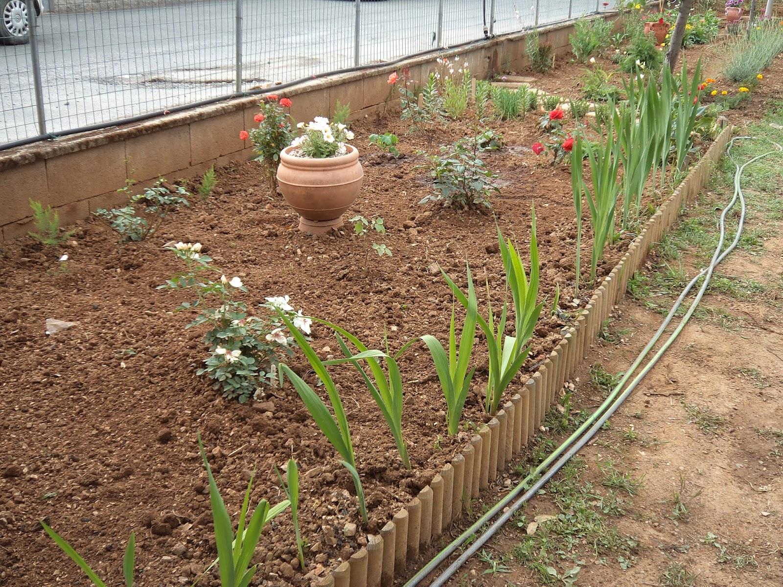 I giardini di carlo e letizia for Orto giardino