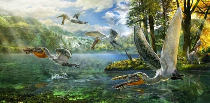 Ilustração da descoberta