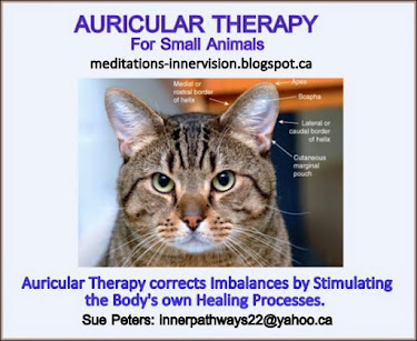 Auricular Therapy for Animals