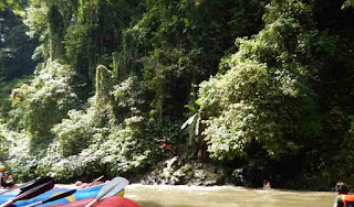 Jump from the rock to the ayung river