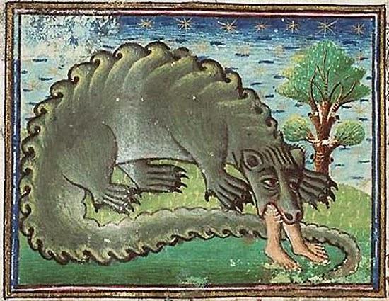 Резултат с изображение за женскии змей