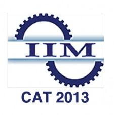 CAT 2013 logo