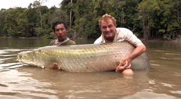 "Menangkap Ikan Besar Menangkap Ikan Air Tawar """