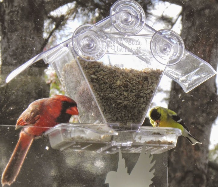 http://lansingwbu.blogspot.com/2011/10/window-feeder-is-best-way-to-entertain.html