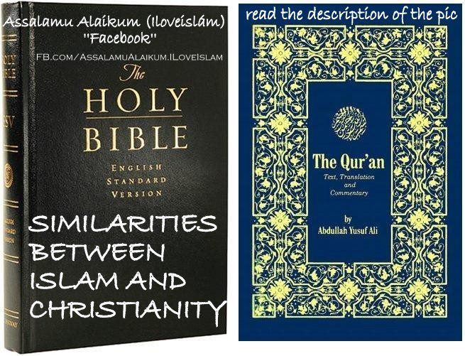 Compare and contrast essay christianity islam
